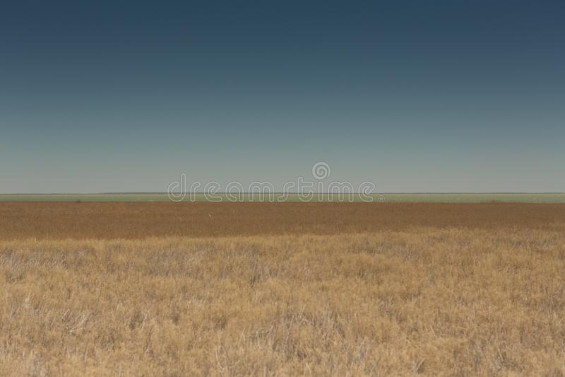 Ekor i vasserna Träfartyg på den gräs- kusten av det Aral havet på en sommardag arkivbilder