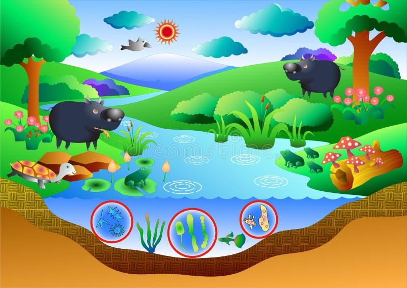 Ekosystemdiagram stock illustrationer