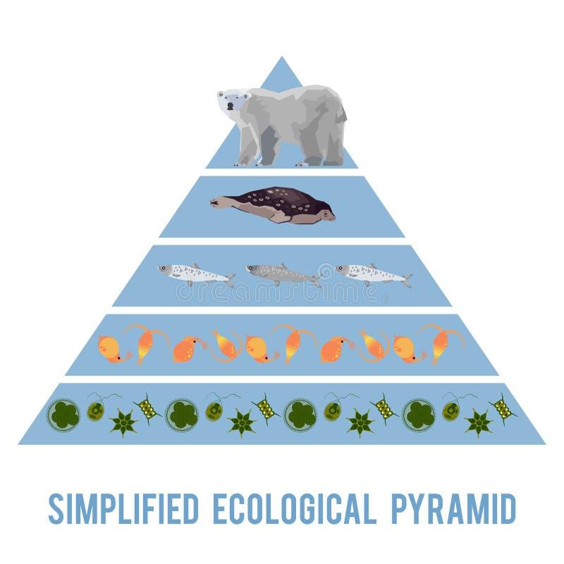 Ekosystemenergiflöde vektor illustrationer