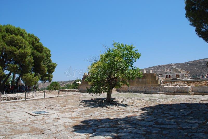 Ekskawacje antyczny miasto Heraklion, Crete fotografia stock