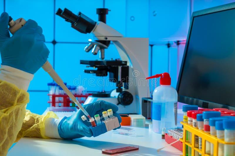 Eksperyment mikrobiologiczny w laboratorium medycznym badanie materiałów genetycznych zdjęcie stock