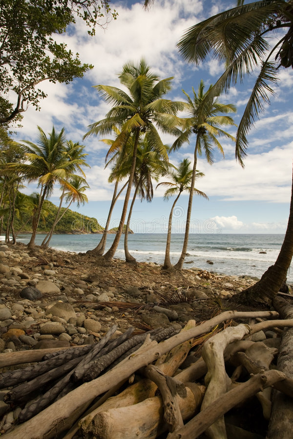 eksploracje dominiki obrazy royalty free