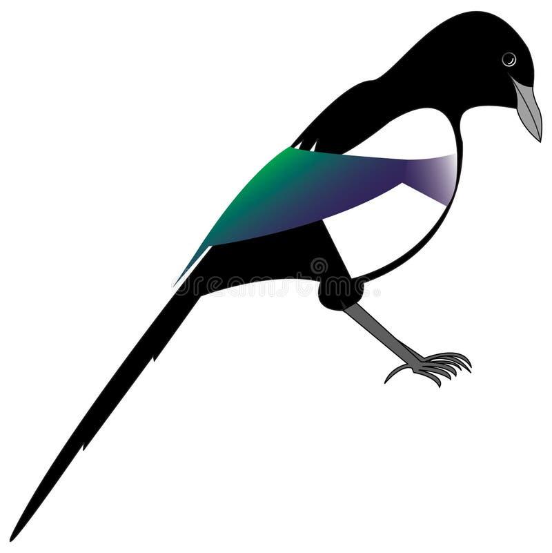Ekster vector illustratie