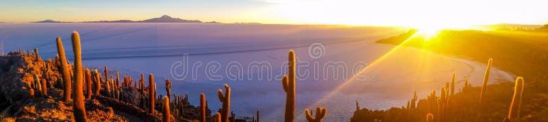 Ekstremum krajobraz, wschód słońca przy wyspą kaktusy na Uyuni soli mieszkaniu, Boliwia obraz stock