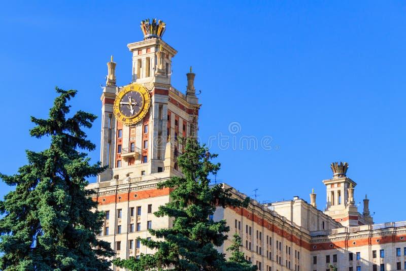 Elévese con el reloj de la universidad de estado de Lomonosov Moscú MSU contra fondo de la picea verde y del cielo azul en evenin imagen de archivo libre de regalías