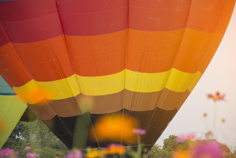 Elévese de globos hermosos en jardín de flores del cosmos con el CCB del cielo fotos de archivo