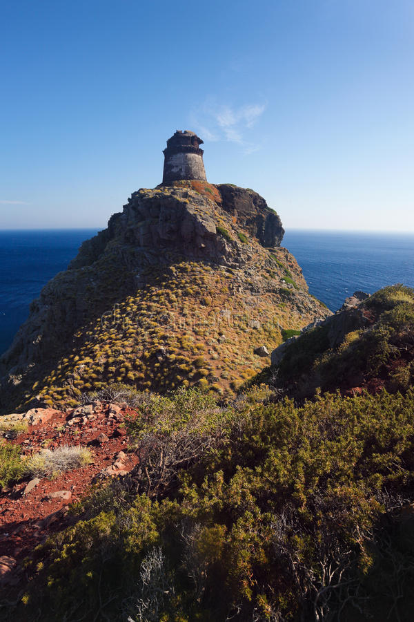 Elévese en la isla Elba, Toscana, Italia, Europa de Capraia imagen de archivo
