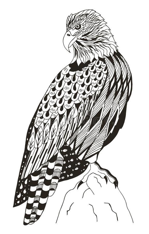 El águila Calva Americana Que Se Sentaba En Una Roca, Zentangle ...