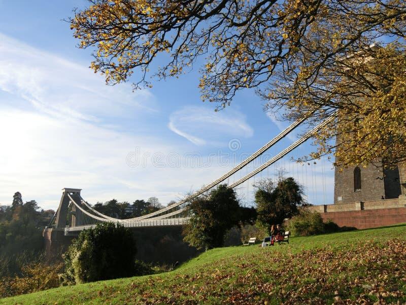 El árbol asombroso y el puente imágenes de archivo libres de regalías