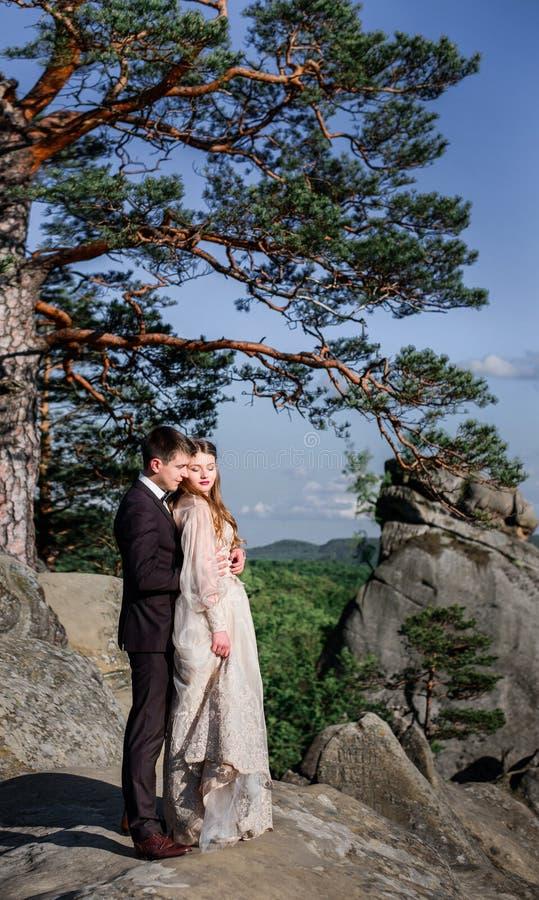 El árbol de la montaña cuelga sobre el abrazo bonito de los pares de la boda imágenes de archivo libres de regalías