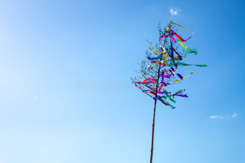 El árbol de mayo, decoración alemana austríaca húngara tradicional del folclore en puede con el cielo azul fotografía de archivo