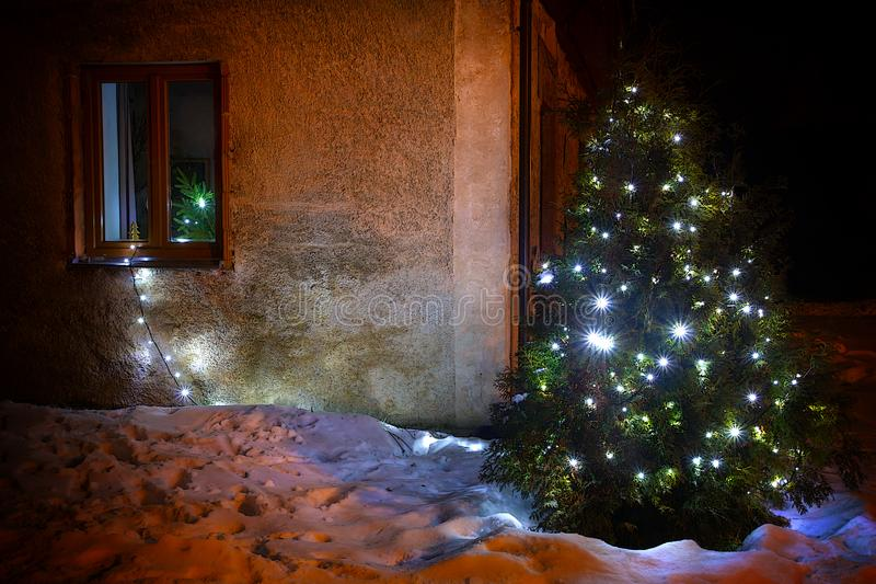 El árbol de navidad brilla en la naturaleza nevosa fotos de archivo libres de regalías