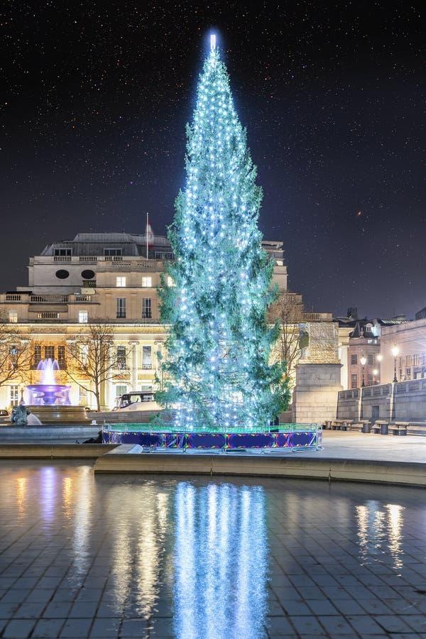 El árbol de navidad en Trafalgar Square en Londres, Reino Unido imágenes de archivo libres de regalías
