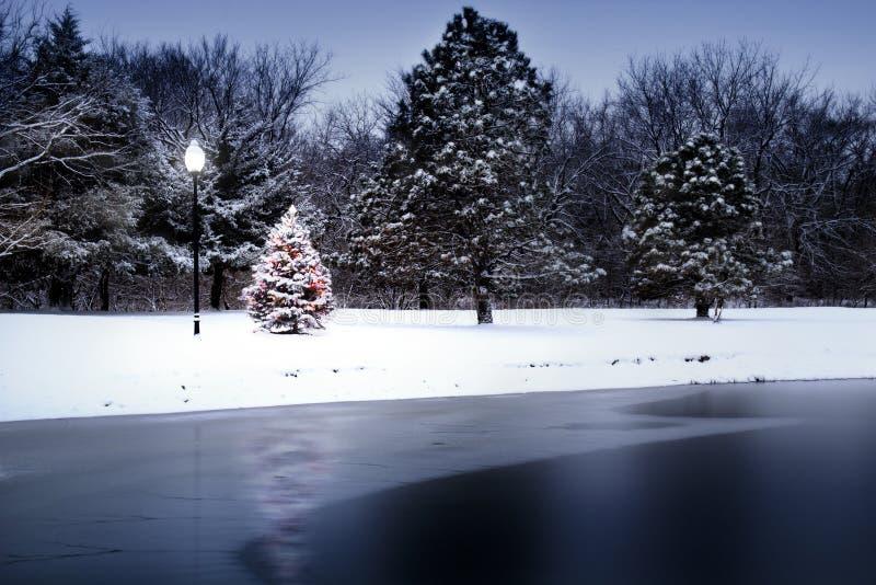El árbol de navidad nevado brilla intensamente mágico en esta escena del invierno foto de archivo