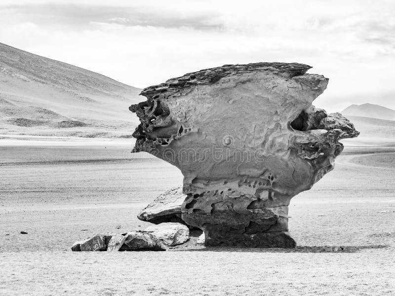 El árbol de piedra de Arbol de Piedra es una formación de roca aislada en Bolivia fotografía de archivo libre de regalías