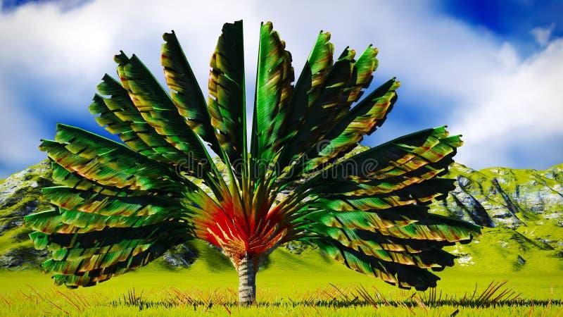 El árbol del viajero libre illustration