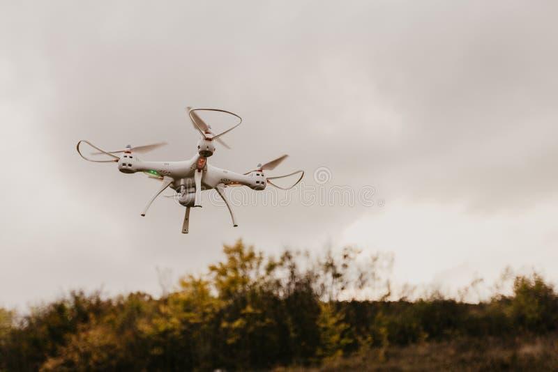 El abejón eléctrico vuela en el cielo fotografía de archivo libre de regalías