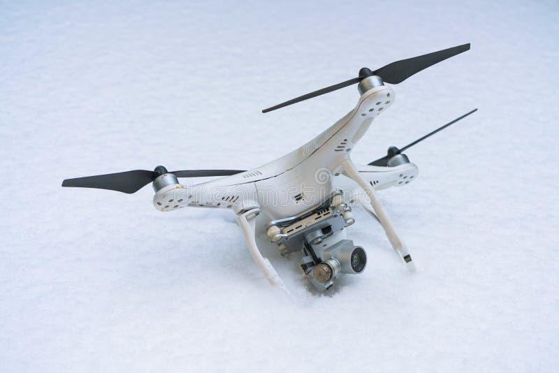 El abejón estrellado Caído en nieve Fantasma 3 foto de archivo libre de regalías
