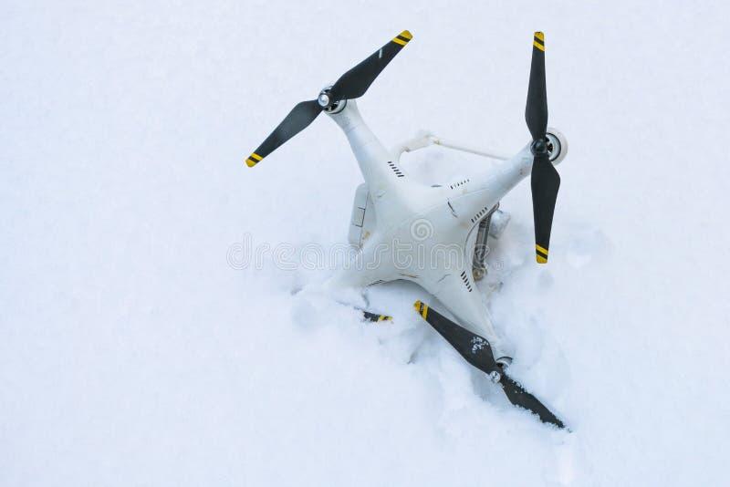 El abejón estrellado Caído en nieve Fantasma 3 imagen de archivo libre de regalías