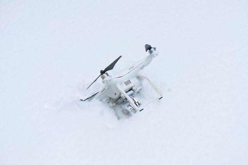 El abejón estrellado Caído en nieve Fantasma 3 fotografía de archivo libre de regalías