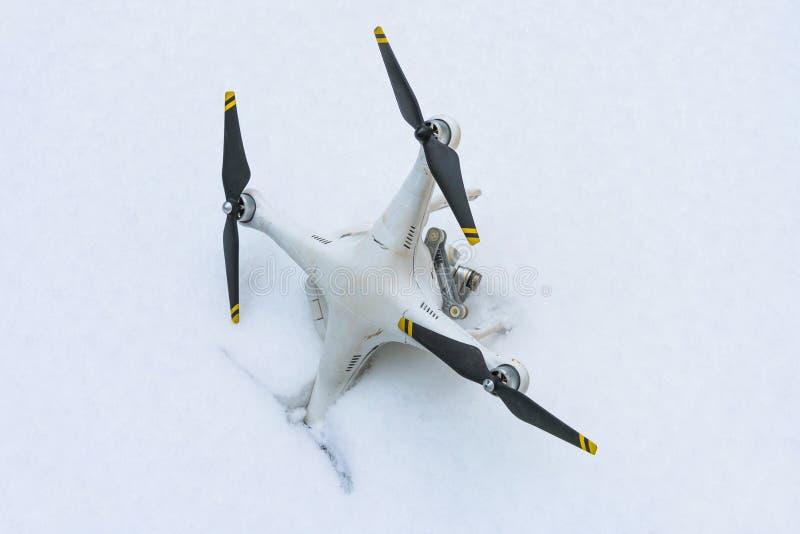 El abejón estrellado Caído en nieve Fantasma 3 fotografía de archivo