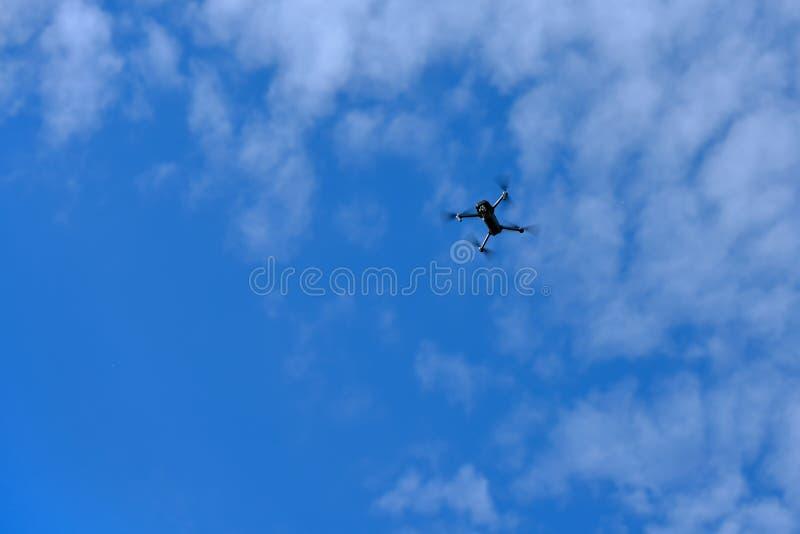 El abejón vuela arriba en el cielo azul foto de archivo libre de regalías