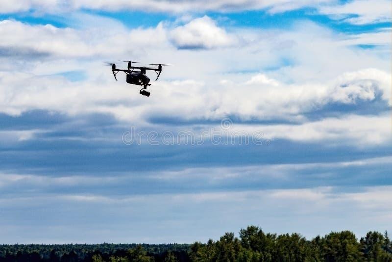El abejón vuela sobre el río y el banco cerca de la ciudad fotografía de archivo libre de regalías