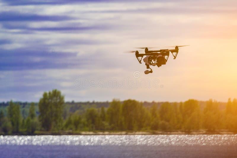 El abejón vuela sobre el río y el banco cerca de la ciudad fotos de archivo libres de regalías