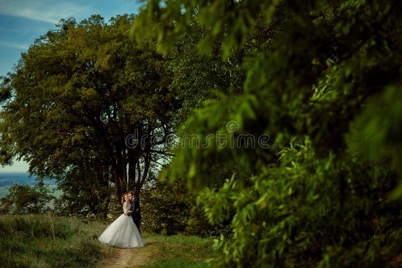 El abrazo de pares sonrientes del recién casado es clothis elegantes de la boda en la trayectoria de bosque Tiro integral imágenes de archivo libres de regalías