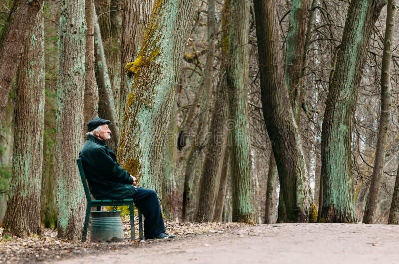 El abuelo se está sentando en un banco en un parque de la primavera Rusia, St Petersburg, abril de 2017 imagen de archivo libre de regalías