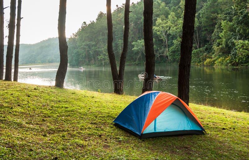 El acampar en bosque fotografía de archivo libre de regalías
