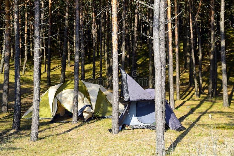 El acampar en bosque imágenes de archivo libres de regalías