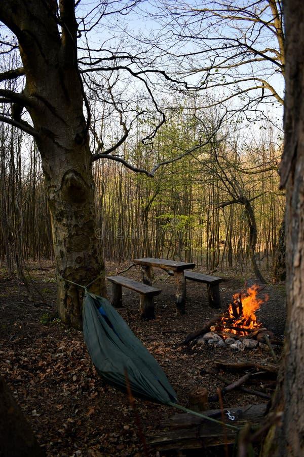 El acampar en bosque imagen de archivo libre de regalías