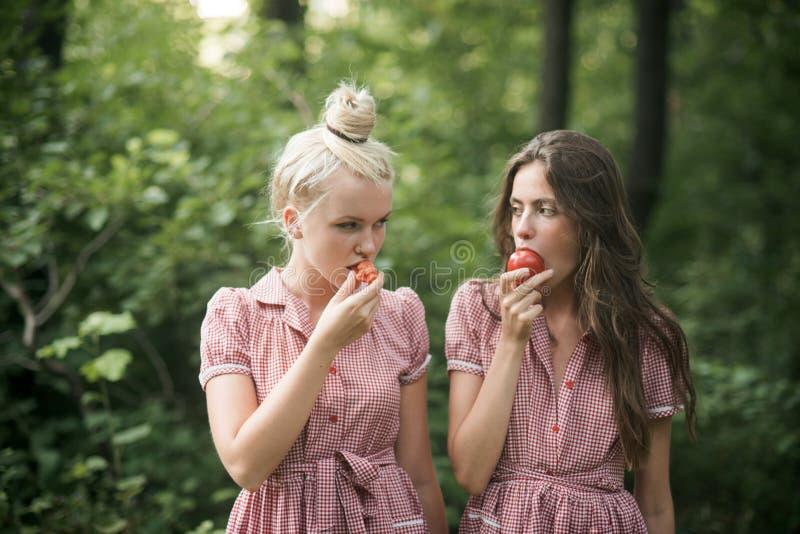 El acampar en bosque Chicas jóvenes hermosas que vagan en las hermanas del bosque dos en vestidos del vintage que comen los tomat foto de archivo