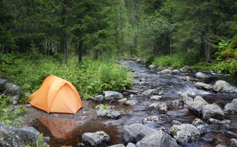 El acampar en el bosque fotos de archivo