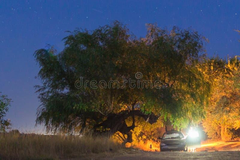 El acampar en las estrellas de la noche fotos de archivo