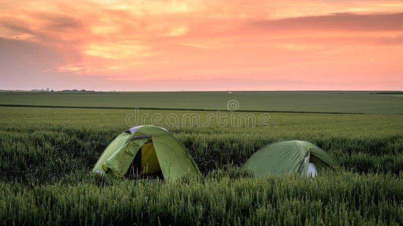 El acampar en los campos de trigo imagen de archivo