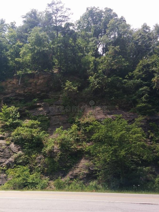 El acantilado del norte de Carolina Hillside oscila el follaje escénico fotografía de archivo