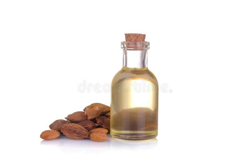 El aceite de semilla del albaricoque al lado de los huesos del albaricoque en un blanco aisló el fondo fotos de archivo libres de regalías