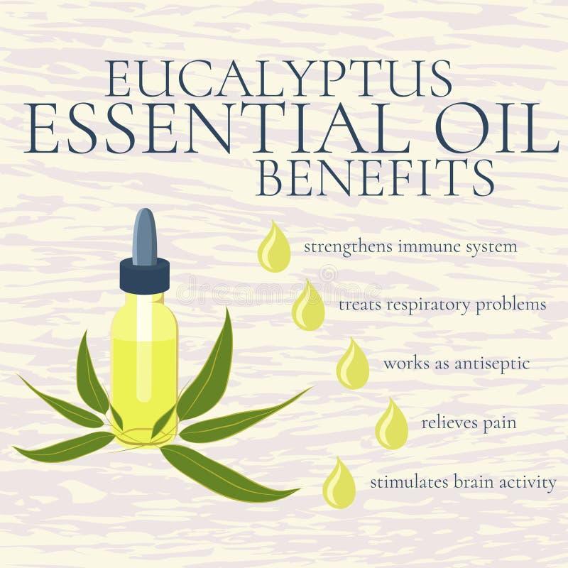 El aceite esencial del eucalipto beneficia a infographics ilustración del vector