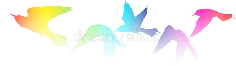 El acercamiento creativo coloreó siluetas de pájaros en blanco ilustración del vector