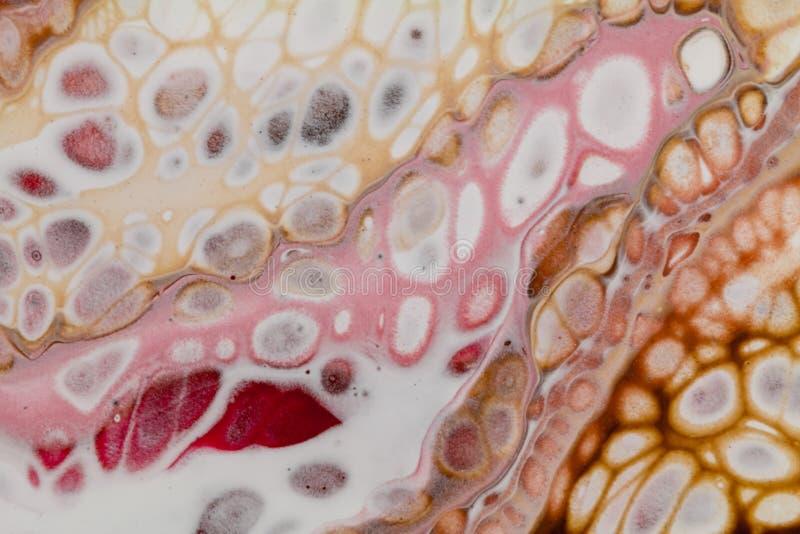 El acrílico abstracto vierte la pintura con las células, naranja rosada blanca de Brown fotografía de archivo libre de regalías