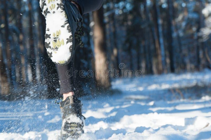 El activar en invierno Funcionamiento a través de la nieve nieve del bosque del funcionamiento foto de archivo