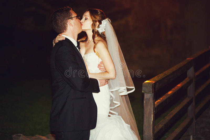 El adorno del novio y de la novia elegantes de la moda es el besarse en la parte posterior fotografía de archivo libre de regalías