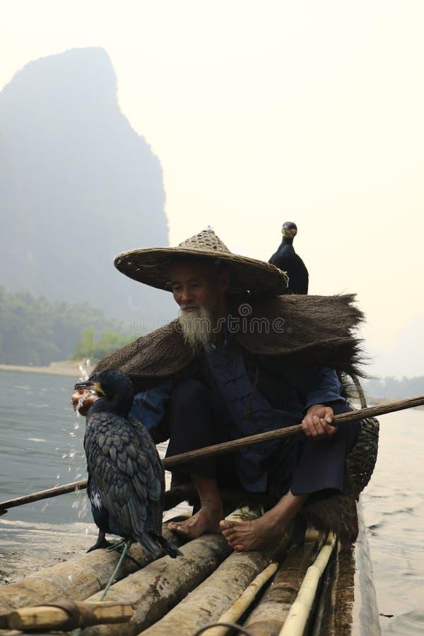 El agua de alimentación del pescador del cormorán a su cormorán fotos de archivo libres de regalías