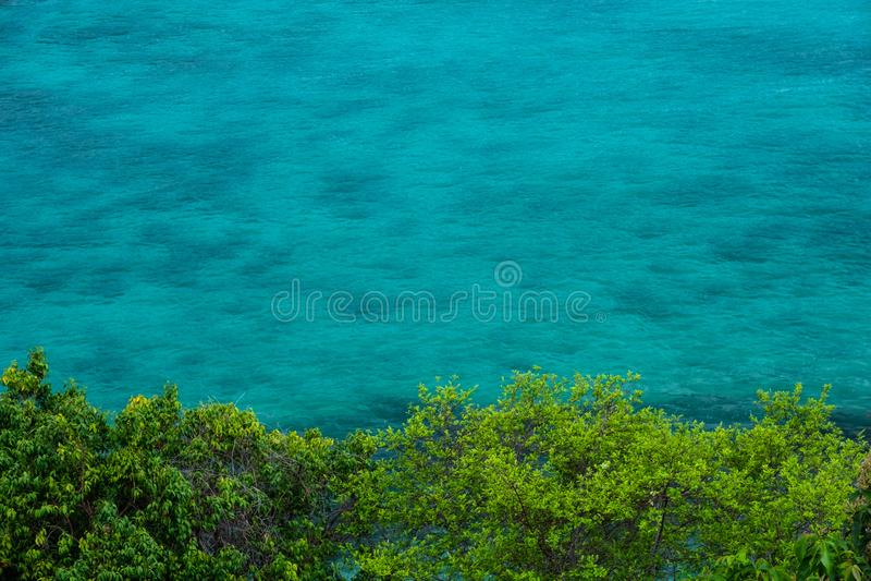 El agua de la turquesa con los arbustos verdes delante de las ondas ligeras del mar hace el agua clara superficial en varios tono imagen de archivo