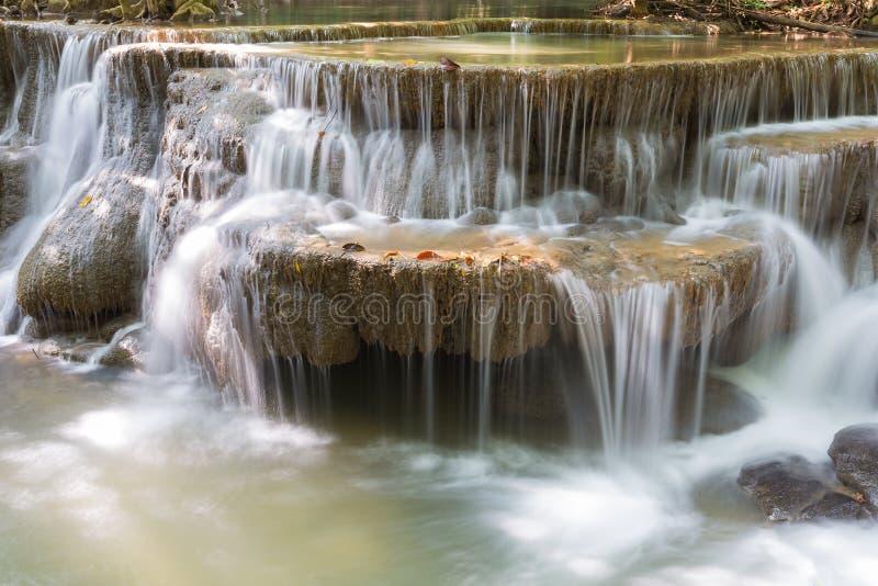 El agua de manatial del primer conecta en cascada en cascadas profundas del bosque del forestCloseup profundo en parque nacional fotografía de archivo