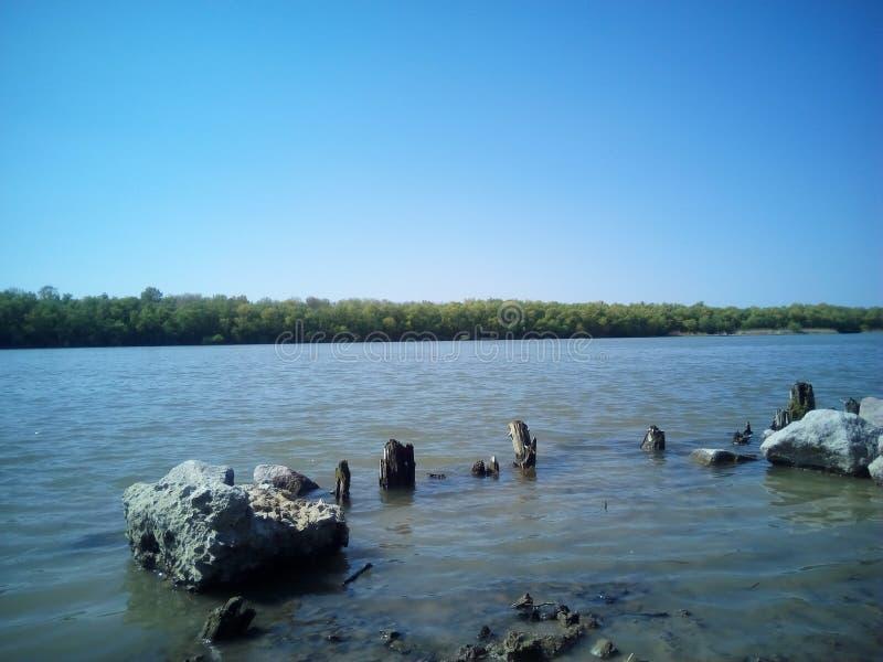 el agua empiedra hermosa vista del río de los árboles imágenes de archivo libres de regalías