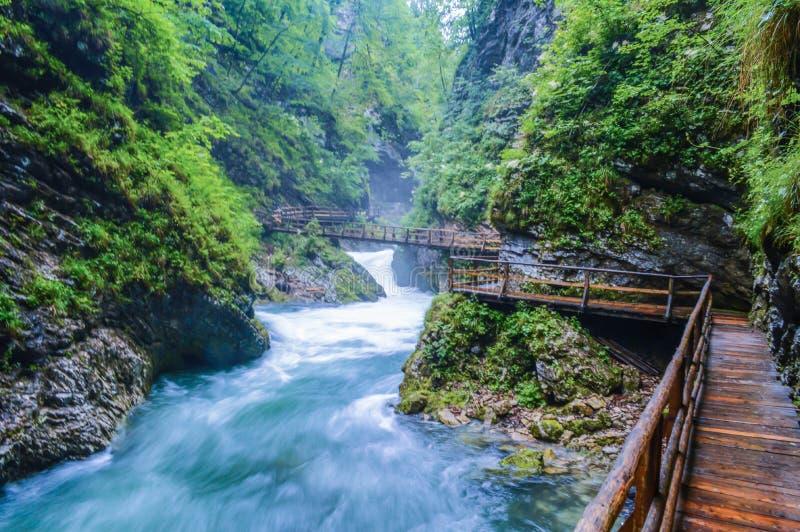 El agua fluído de la garganta de Vintgar en Eslovenia imagenes de archivo