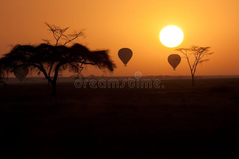 El aire caliente hincha el vuelo sobre Serengeti Tanzania en foto de archivo